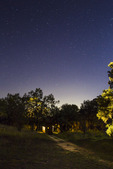 Night sky at Block Creek Natural Area in the Texas Hill Country near Comfort, Texas