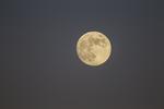 Full moon in the twilight sky on October 28, 2012, harvest moon.