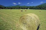 Hay bales in field at Mountain Farm Museum, on the North Carolina side of  in Great Smoky Mountains National Park.
