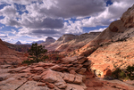 Zion High Country
