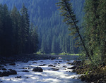 Idaho, Nez Perce National Forest, Selway River cascades