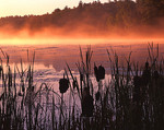 Minnesota, Voyageurs National Park, Sullivan Bay and mist in first light, (view 2)