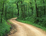 Missouri, Ozark National Scenic Riverways, Dirt forest road near Roberts Field