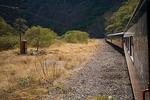Mexico, Chihuahua, Sierra Madre, Copper Canyon area, Copper Canyon train between Divisadero and Temoris