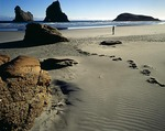 New Zealand, South Island, Collingwood, Wharariki Beach, hiker and boulder on beach