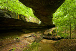 Ohio, Rockbridge State Nature Preserve, natural bridge, view from underneath