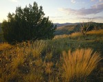 Texas, Davis Mountains State Park, Mountain view, sunset
