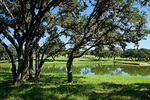 Texas, Kendall County, Hill Country, private ranch.