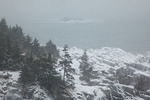 Maine, Quoddy Head State Park in winter snow storm, rocky shoreline