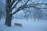 Maine, York Harbor, bench in park in record snow storm/blizzard of February 2013