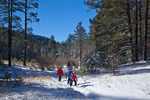 New Mexico, Gila National Forest, Pinos Altos Range with snow, Signal Peak/Cherry Creek area, Signal Peak Trail, Patricia, Jason, and Michelle Parent hiking