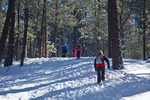 New Mexico, Gila National Forest, Pinos Altos Range with snow, Signal Peak/Cherry Creek area, Patricia, Jason, Michelle Parent on sledding hill