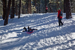 New Mexico, Gila National Forest, Pinos Altos Range with snow, Signal Peak/Cherry Creek area, Patricia, Jason, Michelle Parent on sledding hill, Jason sledding