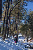 New Mexico, Gila National Forest, Pinos Altos Range with snow, Gomez Peak trails, hikers Patricia, Jason, and Michelle Parent