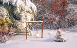 Surprise Snow Storm on April Fools Day at  Backyard Bird Feeders and Re-cycled Bird Friendly Christmas Tree