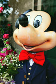 Mickey Mouse in Red Bowtie! Walt Disney created a magical world with his characters of fantasy. The daily parade at Disney World, Orlando Florida is an exciting moment for kids and adults alike, as they encounter characters whom they've only imagined. The realistic portrayal, music, costuming and performance by the actors/players enhances the crowds' enjoyment!