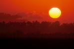 Sunrise at Taylor Slough