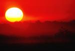 Sunrise over Taylor Slough.