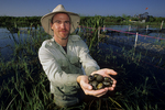 Phil Darby holding Florida apple snails