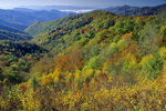 Newfound Gap, Noland Divide and Deep Creek, Great Smoky Mountains National Park, North Carolina