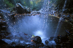 Grotto Falls, Great Smoky Mountains National Park