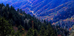 Panoramic landscape from Newfound Gap.