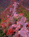 Chimney Tops Peak
