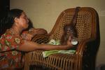 A blind woman employed by Orangutan Foundation International feeds milk to an infant Bornean Orangutan.