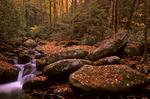 Autumn scene at Roaring Fork