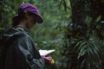 Lisa Paciulli logging research data.