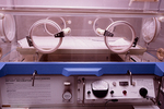 Infant incubator used for primate care (gibbons).