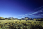 Sagebrush scrub and grasslands at Swan Lake with Sepulcher Mountain and Electric Peak