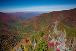 Autumn scene from Chimney Tops peak