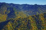 Autumn scene from Chimney Tops peak