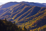 Autumn landscape from Newfound Gap