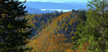 Autumn panoranmic of Noland Divide and Deep Creek from Newfound Gap