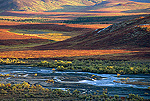 Autumn tundra, Denali National Park and Preserve, Alaska