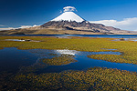 Lake Chungara with Parinacota Volcano, Lauca National Park, Chile