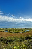 Scenic view of the Cape Cod National Seashore Ponds leading out to the Atlantic Ocean,  Pilgrim Heights area, Truro, Cape Cod, MA, USA