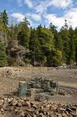 Lobster traps on beach, Mount Desert Island, Maine, ME, USA
