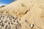 Litter by huge sand dune cliffs along Long Nook Beach, Cape Cod National Seashore, Truro, Cape Cod, MA, USA