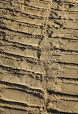 Tractor tracks in soil at housing construction site.