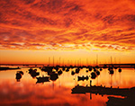 Spectacular Sunrise, Vineyard Haven Harbor