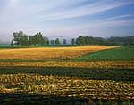 New York Farmland