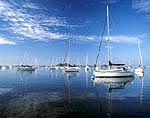Sailboats in Pine Island Bay