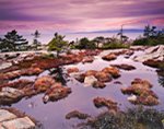 Temporary Pool, Schoodic Point, Schoodic Peninsula, Acadia National Park, Winter Harbor, ME