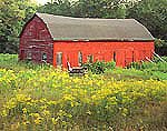 Old Red Barn in Field of Goldenrods