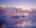 Sailboats in Morning Ground Fog, Connecticut River