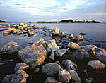 Shoreline, Pine Island Bay