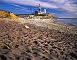 Purple Sand at Montauk Point Lighthouse